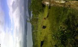 IMG-20121114-00859